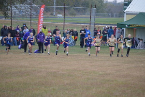 NCMS Cross Country Ends Season at Jackson Heights