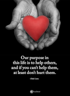 Our purpose in this life is to help others, and if you can't help them, at least don't hurt them. Dali Lama