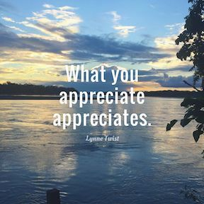 What you appreciate appreciates. Lynne Twist